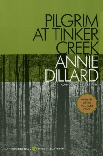 analysis of an american childhood by annie dillard In this wonderful book annie dillard writes about the dreaming memory of the  land and conjures up her past in this reader as his very own dreaming memory.