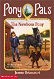 The Newborn Pony (Pony Pals #28)