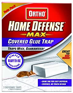 Ortho 0320410 Home Defense Max Covered Glue Traps Ready-to-Use, 2-Pack