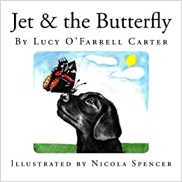 jet amp the butterfly amazon co uk lucy o farrell carter