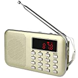 VITE L-218 Portable AM/FM Radio with Mp3 Music Player Speaker Support Micro IF Card (Gold)