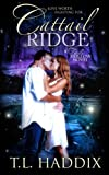 Cattail Ridge (Firefly Hollow Book 4)