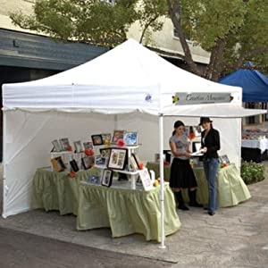 10 X 10 Commercial E-z Up Instant Shelter With 4 Zippered Sides from EZ-UP