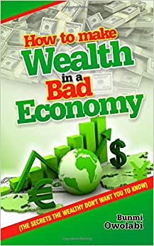 HOW TO MAKE WEALTH IN A BAD ECONOMY -Secrets the Wealthy don't want you to Know (Volume 1) ebook