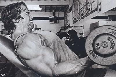 Arnold Schwarzenegge Body Building Nice Silk Fabric Cloth Wall Poster Print (36x24inch 20x13inch)