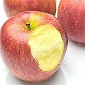 果物 ギフト 長野県産 シナノスイート 完熟 りんご 1箱 10kg