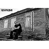 Empire Merchandising 658050 Eminem - LP 2 - Musikposter Foto Rap Hiphop Poster Plakat Druck - Größe 91,5 x 61 cm