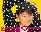 島崎和歌子20th anniversary BOX(DVD付)