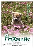 「きな子~見習い警察犬の物語~」公開記念 犬だワンダフルキャンペーン ハラスのいた日々 (限定生産) [DVD]