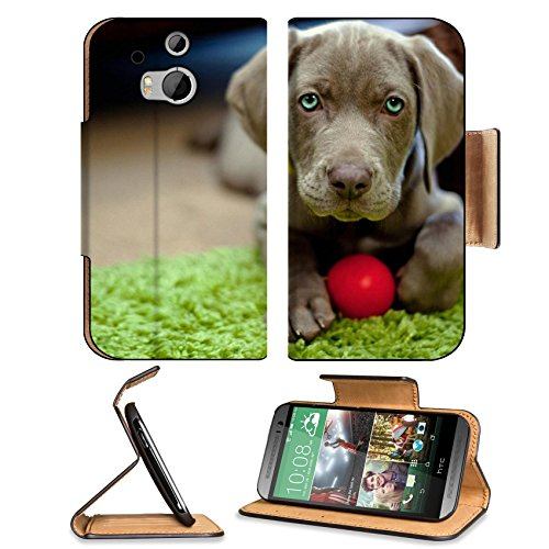 Dog Puppy Snout Ball Toy Htc One M8 Flip Case Stand Magnetic Cover Open Ports Customized Made To Order Support Ready Premium Deluxe Pu Leather 6 4/16 Inch (158Mm) X 3 4/16 Inch (82Mm) X 9/16 Inch (14Mm) Liil Htc1 Cover Professional M 8 Cases M_8 Accessori front-38460