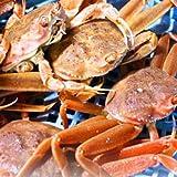 セイコガニ 活 北海道産 香箱ガニ せいこ蟹 せいこがに セコガニ 訳あり たっぷり1kg詰(約4-6尾入)