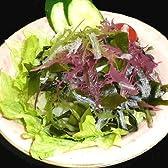 ダイエットサラダ9食分食べて健康に痩せる業務用海藻ダイエット1食わずか16kcal