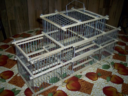 Finch Trap Cage http://finchbirdcages.blogspot.com/2012/02/buy-discount-small-finch-hand-made-trap.html