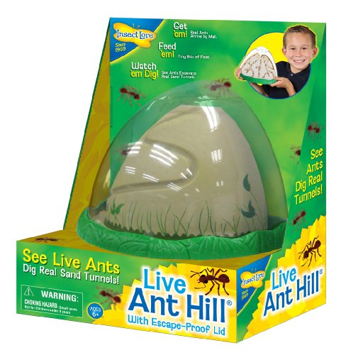 ant-farm-viewing-habitat-escape-proof-ant-hill-kit-includes-sand-and-activity-book