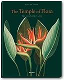echange, troc Prof Dr Werner Dressendrfer - Thornton, Temple of Flora