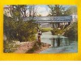 Antigua Postal - Old Postcard : Puentes metálicos sobre el río Jalón - ALHAMA DE ARAGÓN