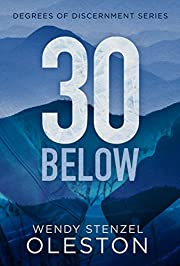 30 Below (Degrees of Discernment Book 1)