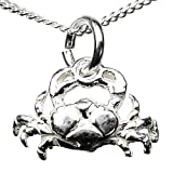 Crab Cancer Silver Charm Necklace with 18