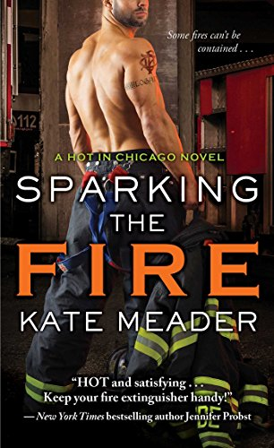Sparking the Fire (Hot in Chicago)
