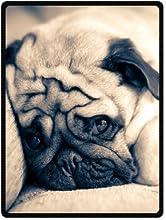 Pug Dog Soft Fleece Throw Blanket 58quot x 80quot Large