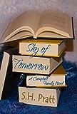 Shy of Tomorrow (A Campbell Family Novel)