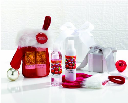 san-francisco-soap-company-shower-gel-lotion-gift-mitten-sets-festive-miniature-gift-sets-sugared-sp