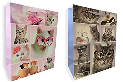 Kittens Gift Bag Set