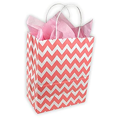 Easter Coral Red and White Chevron Pattern Kraft Gift Bag (Set of 8)
