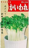 かいわれ(一般種) 数量:40ml