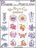 echange, troc Lydie Guillem - Peindre sur la porcelaine : Un arc-en-ciel de camaïeux