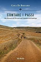 CONTARE I PASSI: Dai Pirenei all'Oceano sul Cammino di Santiago (VIAGGI, SCOPERTE E TRADIZIONI)