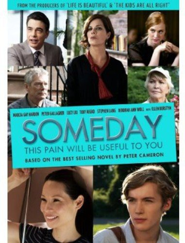 DVD : Someday This Pain Will Be Useful To You