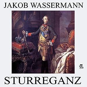 Sturreganz Hörbuch