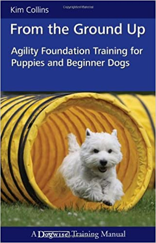 Agility foundation training for puppies