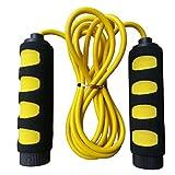 (アワンキー) Aoneky 縄跳び ジャンプロープ 快適なハンドル 調整可能 トレーニング用 ダイエット用 カラフルボックス付き