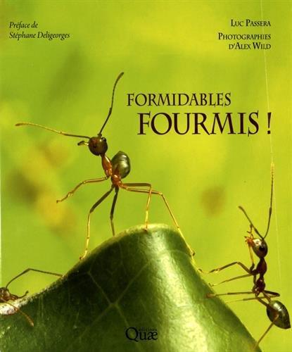 les-fourmis