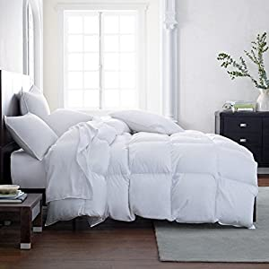 VALENTINE'S DAY DEAL***The Best White Goose Down Alternative Comforter Duvet Hypoallergenic Double Brushed for Superior Softness (Queen) (Queen) (Queen)