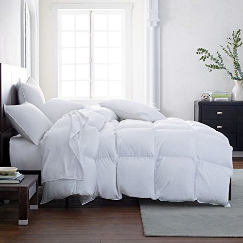Find Cheap SPRING DEAL*** The Best White Goose Down Alternative Comforter Duvet Insert Hypoallergeni...
