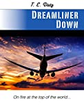 img - for DREAMLINER DOWN: On Fire at the Top of the World book / textbook / text book