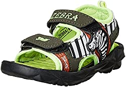 G&D Unisex Zebra Sandals and Floaters