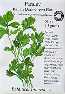 Parsley Italian Flat Leaf Certified Organic Seeds