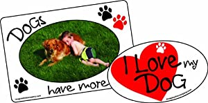 Imagine This 4-1/2-Inch by 5-1/2-Inch Car Magnet Picture Frame 2-in-1 Dog