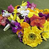 Melissa's Assorted Edible Flowers (40-50 ct.)