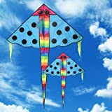 Well-Goal Cartoon Fish Kite Outdoor Sports Park Beach Pink Kites Easy to Fly Toys for Kids
