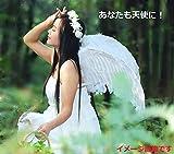(ikinariya) 天使の羽 コスプレ 天使の羽根 天使の輪 天使のステッキ 3点セット サイズ(60cm×40cm)