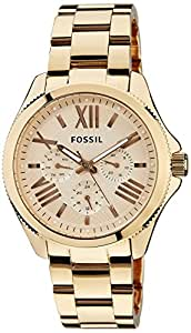 Fossil AM4511 Womens Cecile Wrist Watches