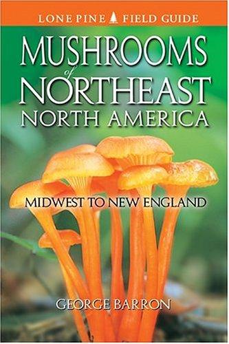 guide audubon mushrooms field
