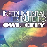 Instrumental Tribute to Owl Citypar Various Artists