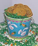 Scott's Cakes 2 lb. Pecan Cookies in a Blue Bunny Pail