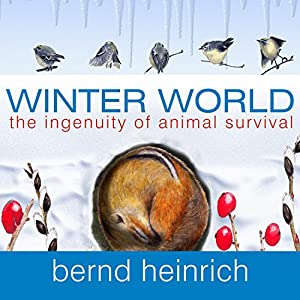 Winter World Audiobook